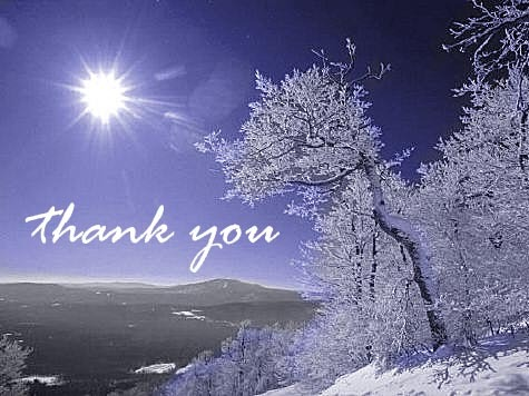 thank_you-7967